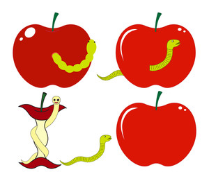 Apples With Creepy Worms