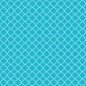 Aqua And White Quatrefoil Pattern On Dinosaur Paper