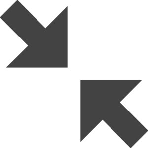 Arrow 16 Glyph Icon