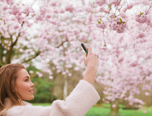 Attractive young woman taking pictures of pink blossom flowers at a spring blossom park. Beautiful caucasian female shooting flowers with her mobile phone.