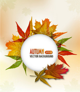 Autumn Frame Vector Illustration