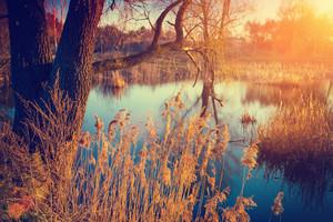 Autumn landscape with lake at sunrise