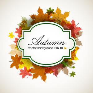 Autumn Leaves Background With Space For Your Text.