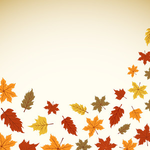 Autumn Leaves With Text Space