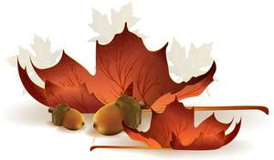 Autumn  Vector Element