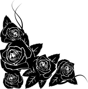 Background Made From Black Roses