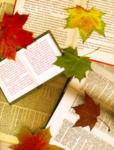Background Made From Opened Books And Maple Leaves
