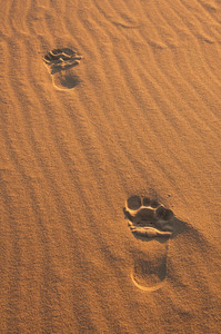 Background of close up sand structures with footprints