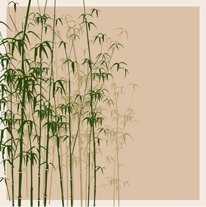 Background With Bamboo. Vector Illustration.