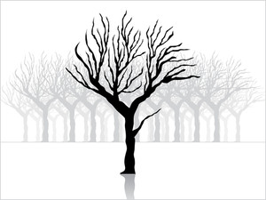 Background With Black Dry Tree