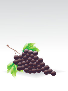 Background With Cluster Of Grapes