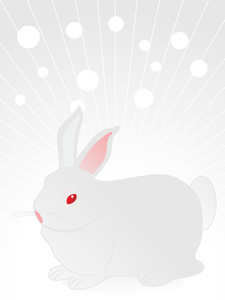 Background With Cute Rabbit