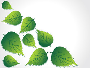 Background With Leaf