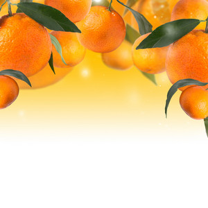 Background With Tangerines