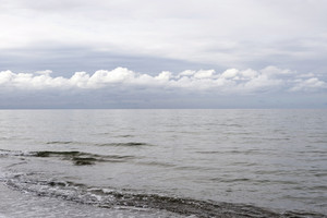Baltic Sea On Darss In Germany