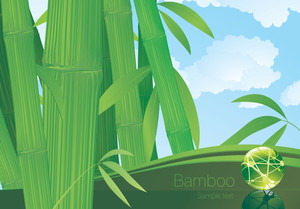 Bamboo Template. Vector.