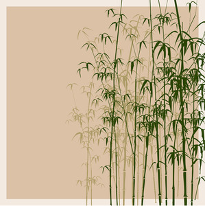 Bamboo Vector Illustration.