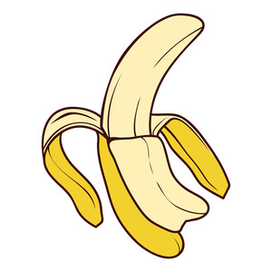 Banana Vector Illustration.