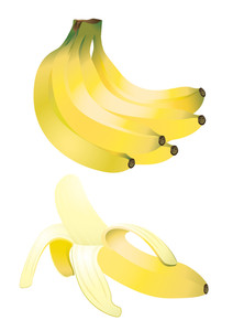 Bananas. Vector Illustration