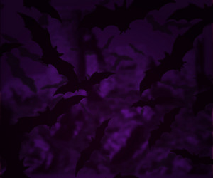 Bats Halloween Backgrounds