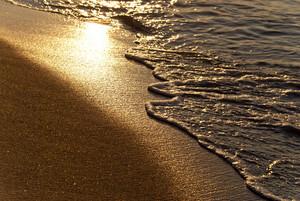 Beach In The Evening