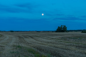 Beautiful after harvest field at evening with moon on sky. Autumnal landscape of polish countryside.