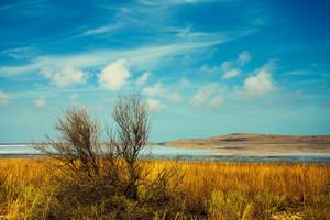Beautiful desert landscape with lake