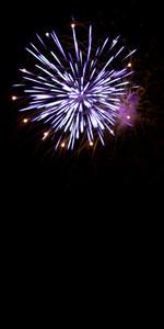 Beautiful fireworks exploding over a dark night sky. Plenty of copyspace.