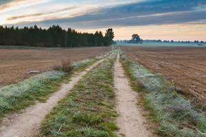 Beautiful landscape of fields and sandy rural road photographed on cold autumnal morning with frosted grass.