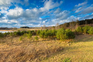 Beautiful landscape photographed from above (from tall observation tower). Early spring meadow with forest under blue sky with clouds. Tranquil scene.