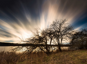 Beautiful long exposure landscape of blurry sky over withered apple tree on lake shore. Fast moving clouds photographed on long exposure.