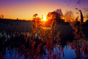 Beautiful rural evening landscscape