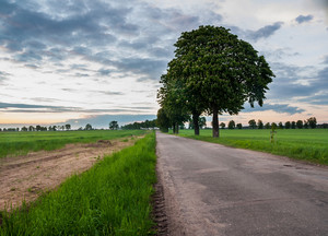 Beautiful rural landscape with asphalt road near fields