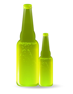 Beer Bottles Vector Drinks