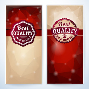 Best Quality Vector Package Template.
