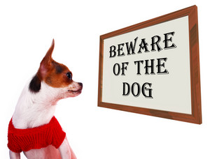 Beware Of The Dog Sign Showing Protection And Warning
