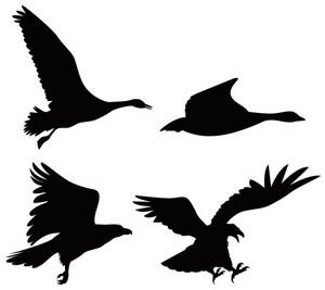 Birds In Retro Style