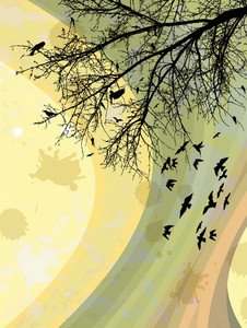 Birds On A Branch Vector Illustration