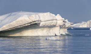 Birds perched on a sunlit iceberg