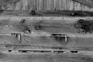 Black And White Wood 1 Texture