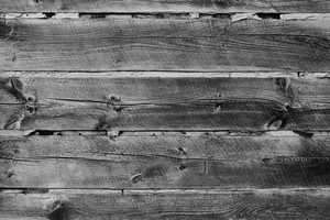 Black And White Wood 2 Texture