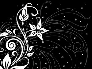 Black Background With White Floral
