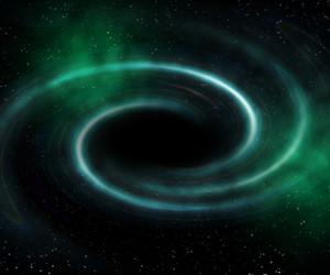 Black Hole Universe Background