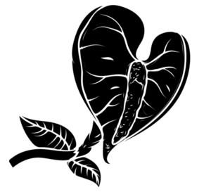 Black Shape Leaf Flower