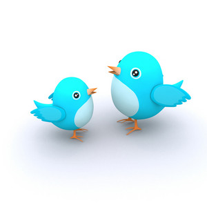 Blue Cute Birds
