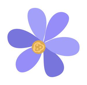 Blue Daisy Design