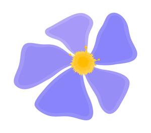 Blue Daisy Drawing