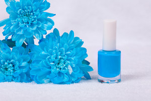 Blue nails polish decorated with chrysanthemum flowers