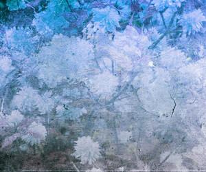 Blue Vintage Flower Texture