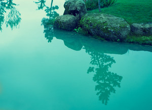 Blue vintage mystical rocky river bank with pine tree reflection